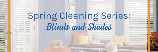 Spring Cleaning Series: Blinds and Shades