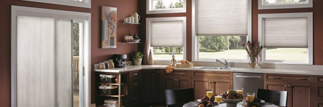 Spring Cleaning Series: Blinds and Window Treatments