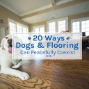 20 Ways Dogs & Flooring Can Peacefully Coexist