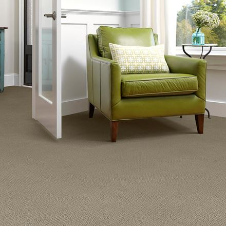 Envision Carpet