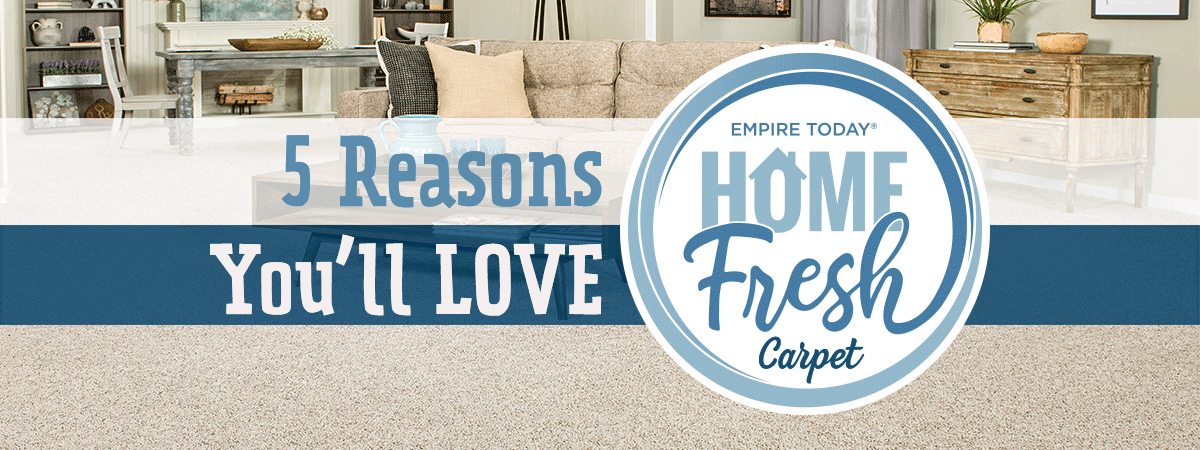 5 reasons you ll love home fresh carpet empire today blog