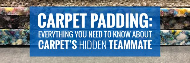 Carpet Padding Types: Everything You Need to Know About Carpet's Hidden Teammate